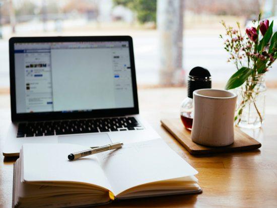 Niche Blog or Micro Niche Blog?